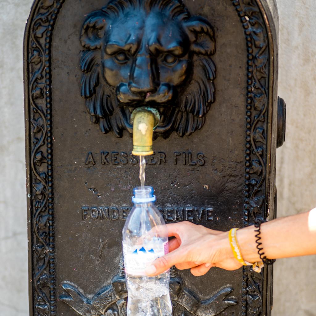 """Résultat de recherche d'images pour """"geneve fontaine lion"""""""