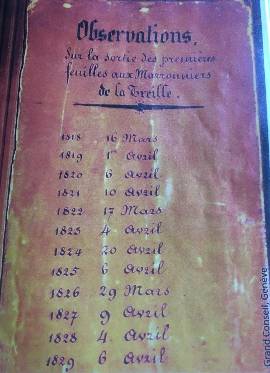 calendrier du marronnier de la Treille